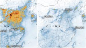 El impacto del covid-19 en la naturaleza