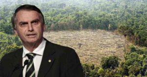 Bolsonaro y la selva amazónica