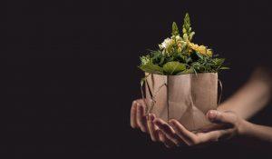 Regalo flores